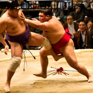 JapanSnowtripTips-thumb-sumo-wrestling-match-osaka-japan-001