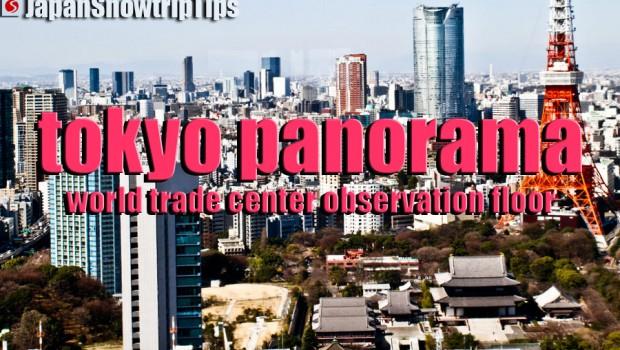JapanSnowtripTips-tokyo-wtc-panoramic-views