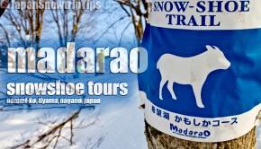 JapanSnowtripTips-madarao-snowshoeing-tours-miiyama-nagano-japan